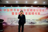 安徽省人大原副主任任海森宣布安徽省首届榜书展正式启动